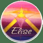 Buch Elise-Funke des Erwachens