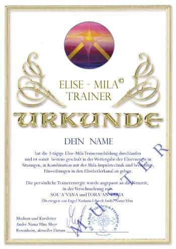 Urkunde-Trainer-Ausbildung