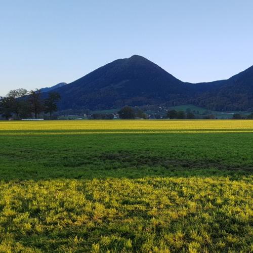 Pyramide Sulzberg